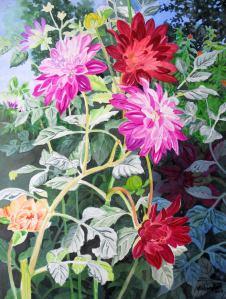 Colorful Dahlias 4