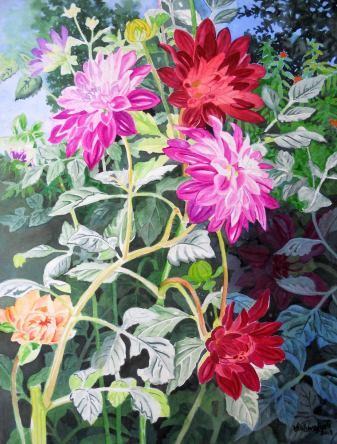 Colorful Dahlias 4