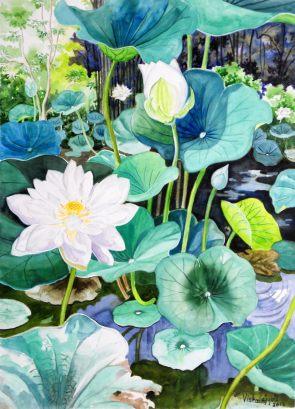 White Lotus Pond 1
