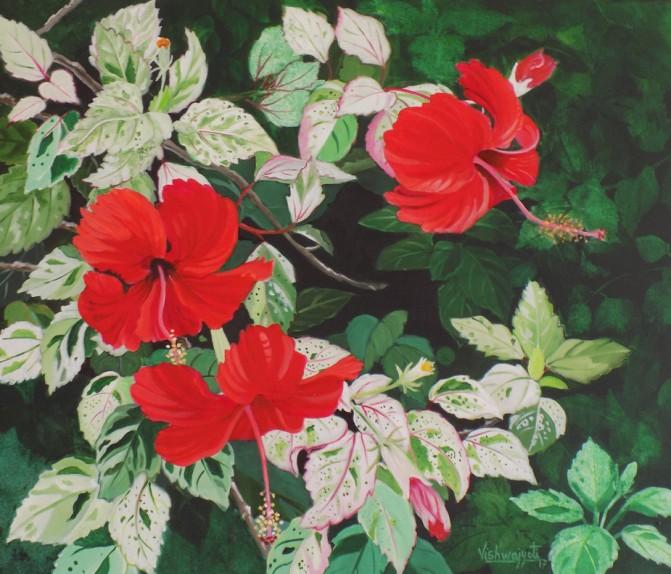 Hibiscus variegated 1