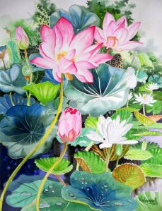 Pink Lotus and White Water Lilies II