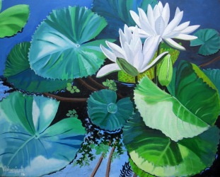 Waterlily Series 2